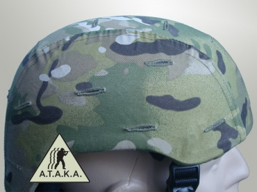 Cover Helm MICH 2001