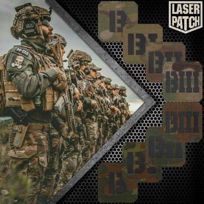 Company Multicam Flecktarn Military Laser Patch